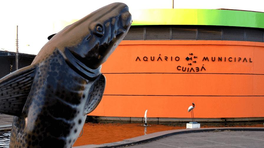 O que fazer em Cuiabá: Aquário Municipal