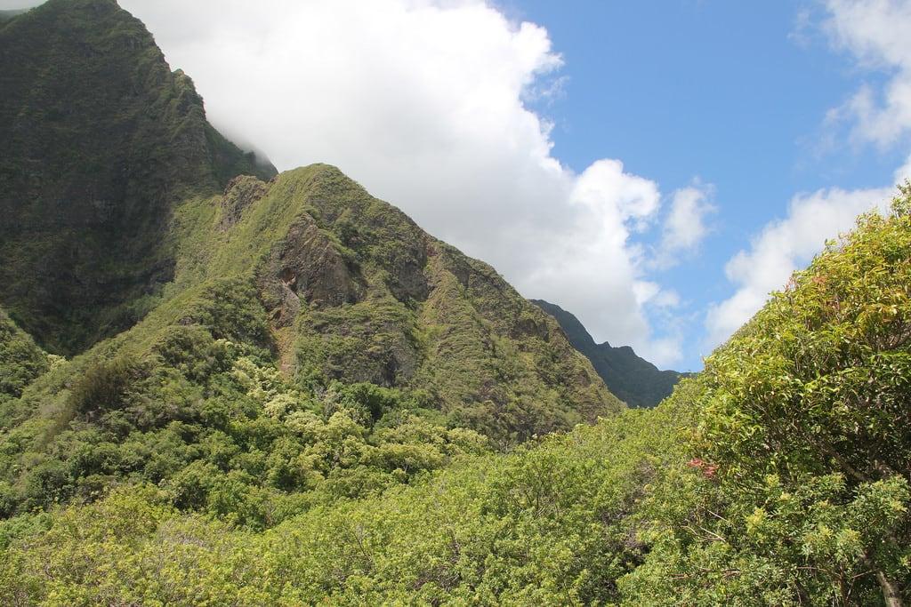 O Que Fazer Em Maui no Havaí: Vale Iau