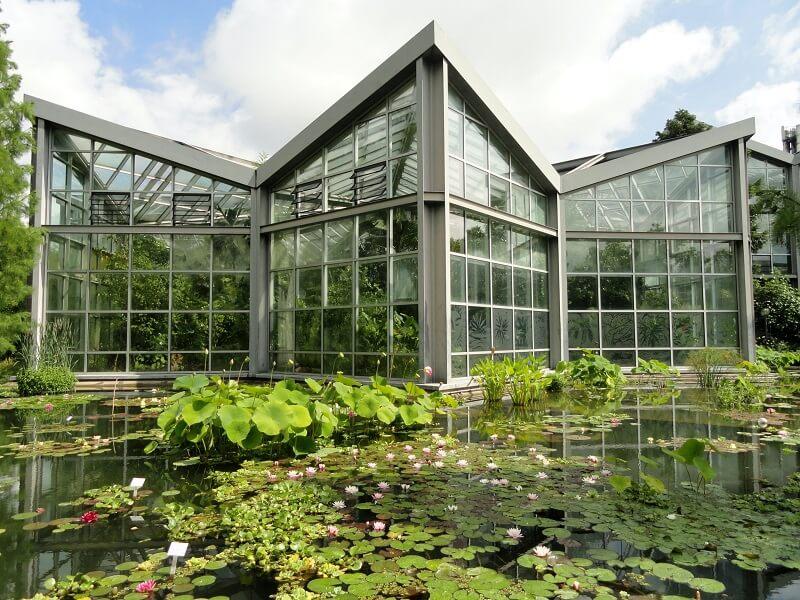O que fazer em Frankfurt: Jardim Palmengarten