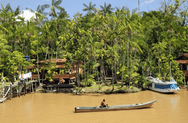 O que fazer em Belém: Ilha do Combu