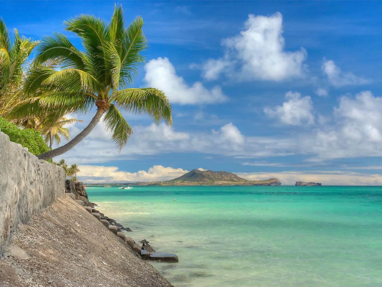 O Que Fazer no Havaí: Oahu