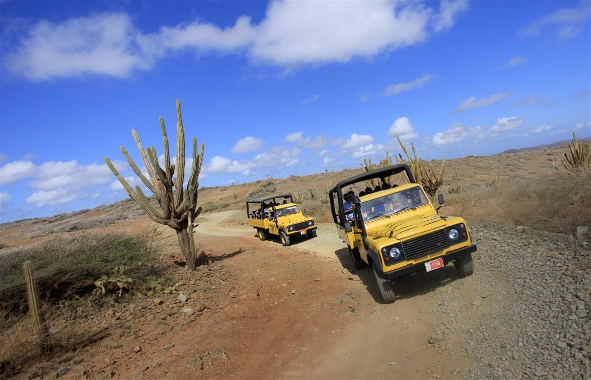 O Que Fazer em Aruba no Caribe: Safári