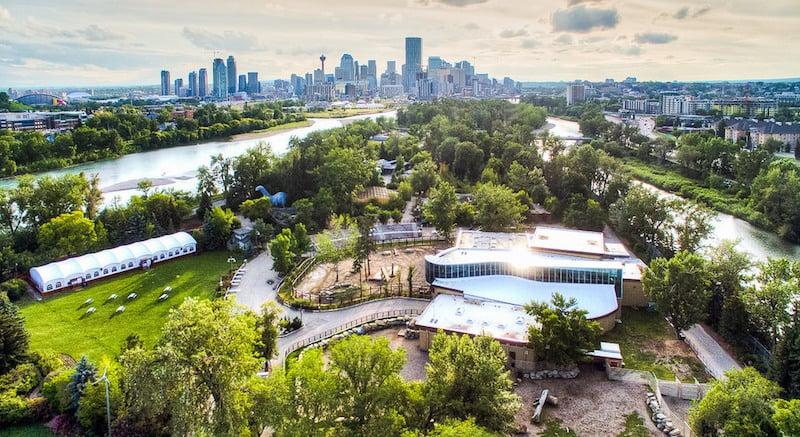O Que Fazer em Calgary no Canadá: Zoológico de Calgary