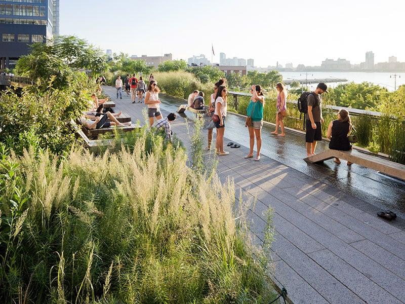 O que fazer em Nova York: The High Line