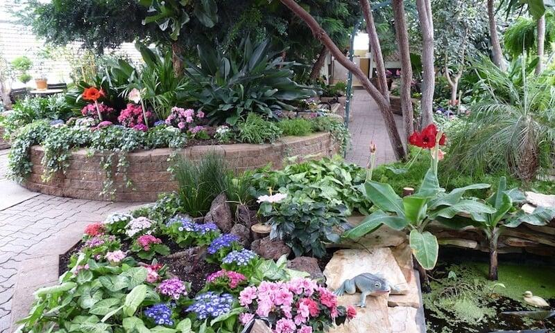 O Que Fazer em Regina no Canadá: Regina Floral Conservatory