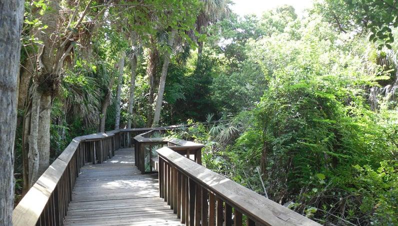 O Que Fazer em Boca Raton: Gumbo Limbo Centro de Educação Ambiental