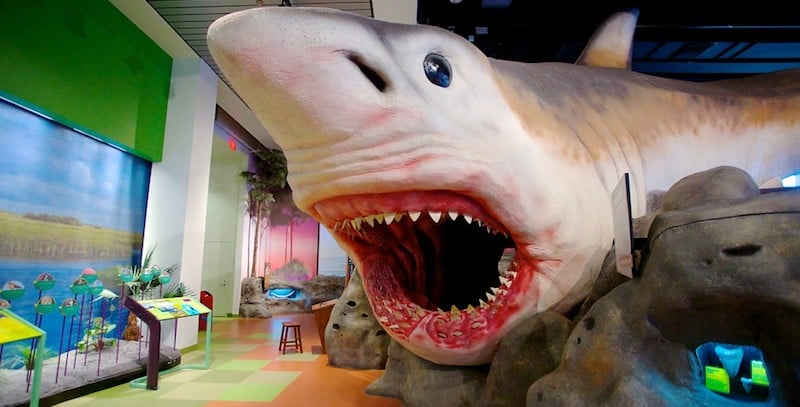 O Que Fazer em Fort Lauderdale: Museum of Discovery and Science