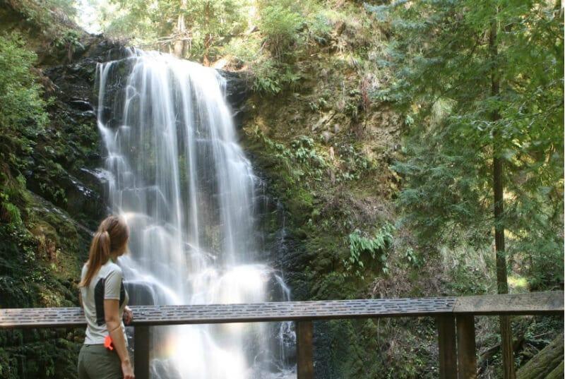 O Que Fazer em Santa Cruz: Big Basin Redwoods State Park