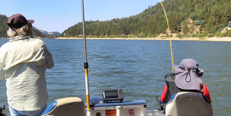 O Que Fazer em Big Bear Lake: Pesca de Truta
