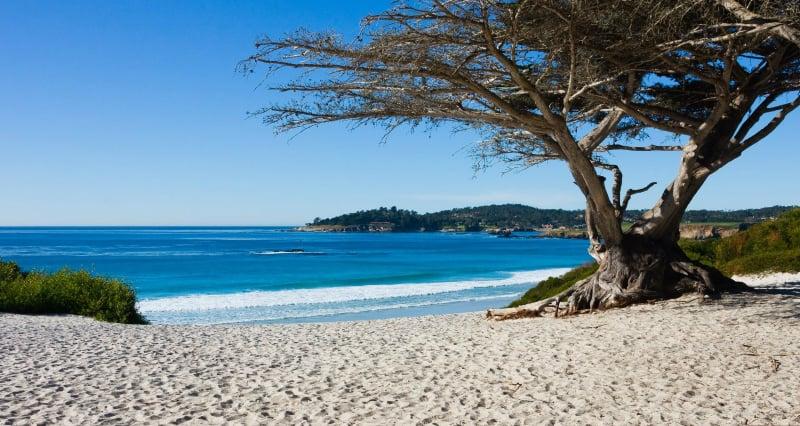 O Que Fazer em Carmel: Praia