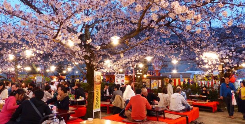 O Que Fazer em Kyoto: Maruyama Park