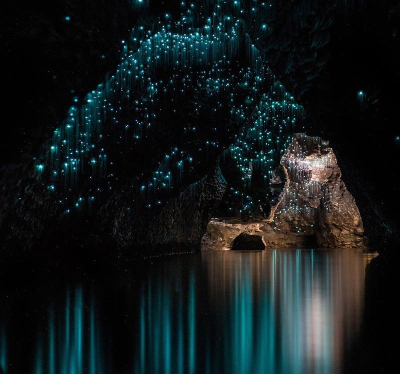 O que fazer em Auckland: Caverna Waitomo