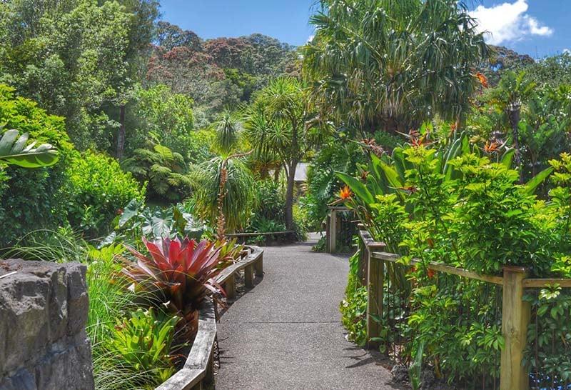 O que fazer em Auckland: Zoo