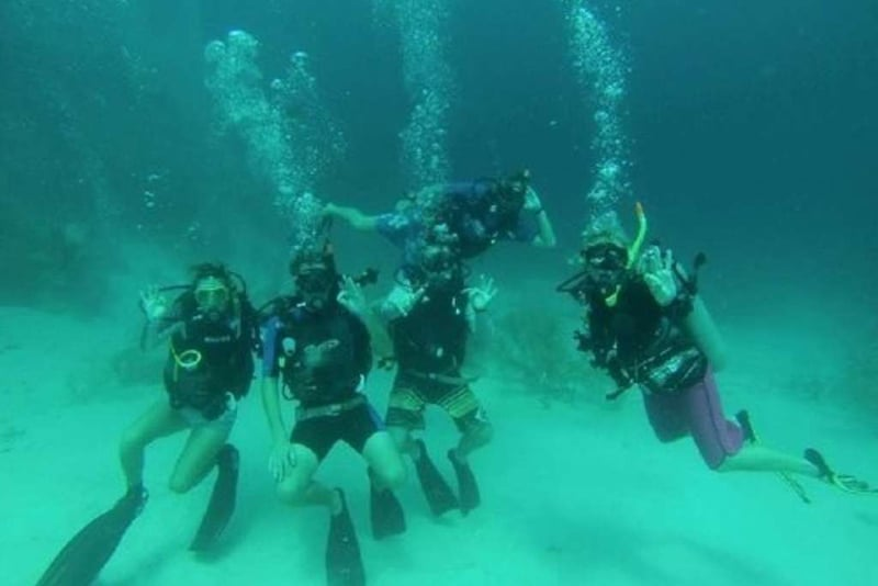 O que fazer em Magnetic Island: Pleasure Divers Magnetic Island