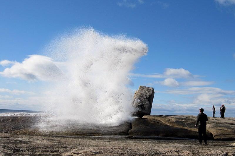 O que fazer na Tasmânia: Blow Hole