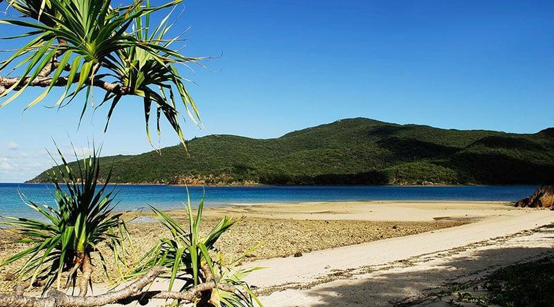 O que fazer em Whitsundays: Ilha Hamilton