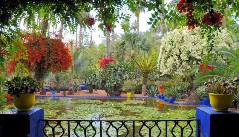O Que Fazer em Marrakech: Jardim Majorelle
