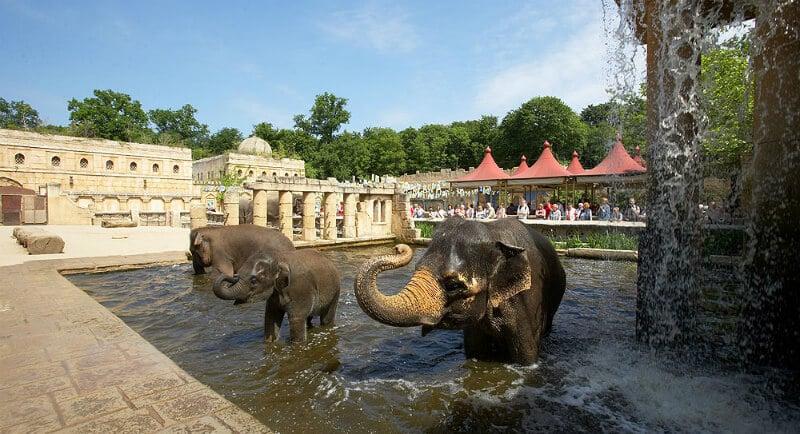 O Que Fazer em Hanôver: Hanover Adventure Zoo