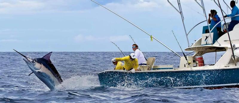 O Que Fazer em Ostend: Pesca em alto mar